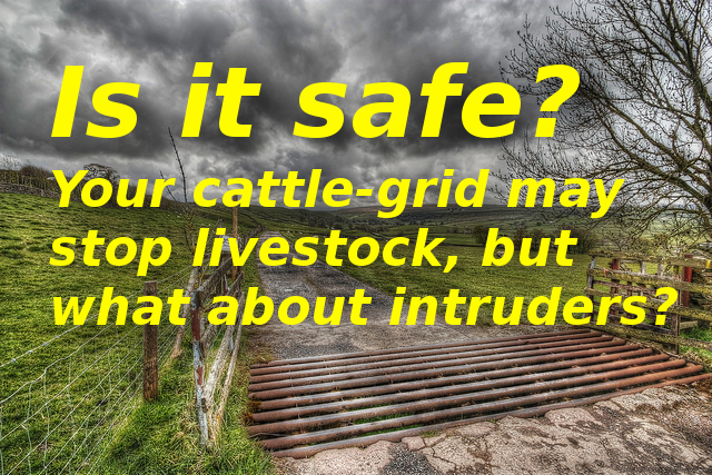 Cattle Grid vs SUN-POWER Auto Gate