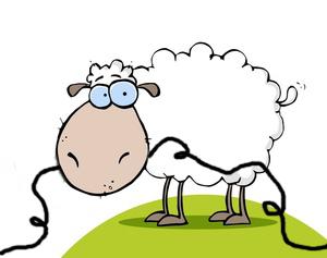 Sheep eats cable